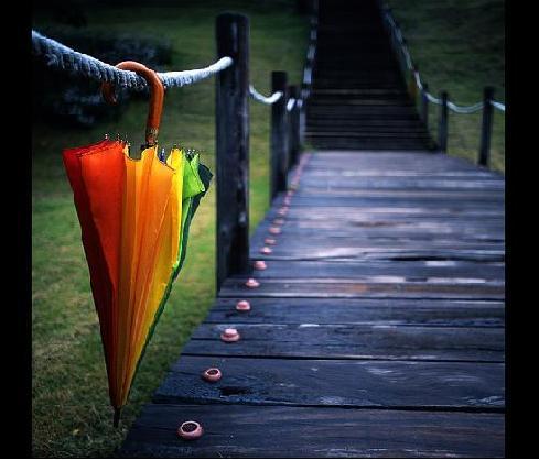 چترها را باید بست